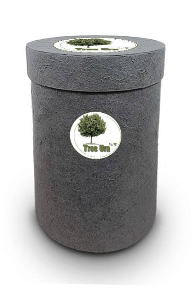 Bio Tree Urn   Esdoorn